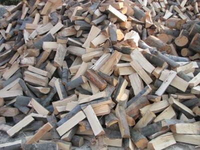 Drewno bukowe bielskobiała